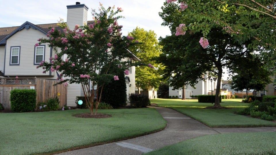 Fairfield-Gardens-10-960x540-crop