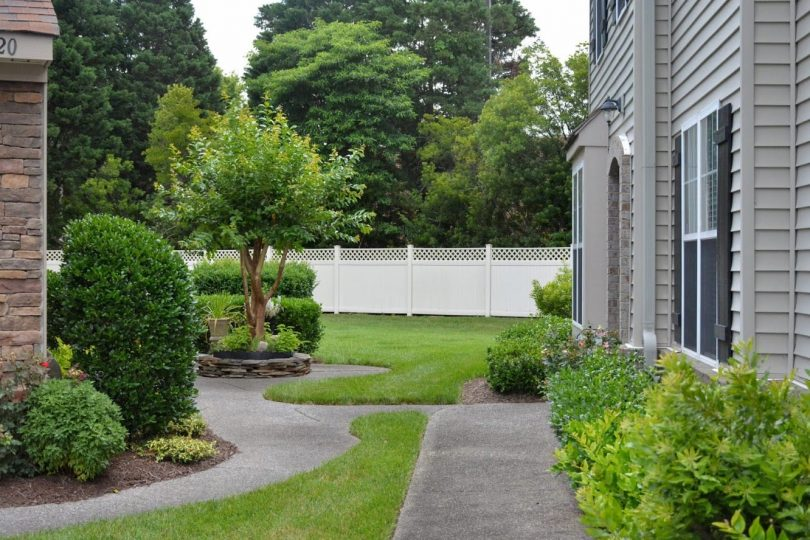 2020-06-15 Green grass - looking into backyards