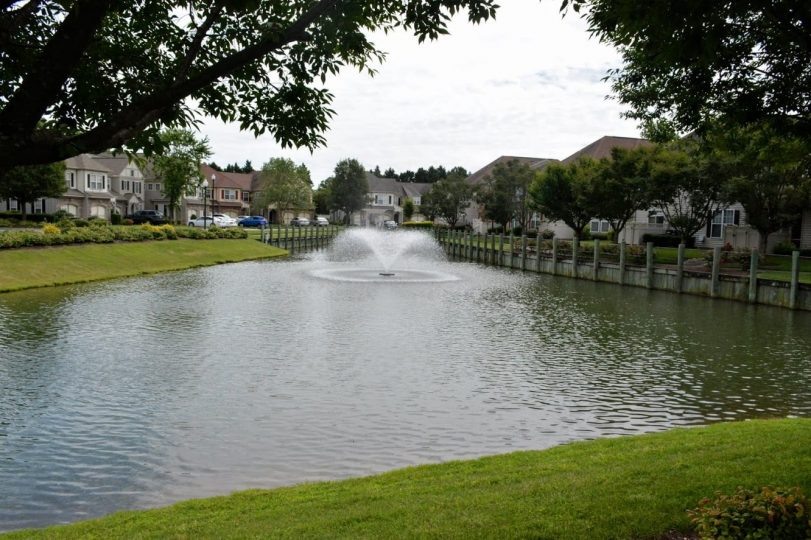 2020-06-15 Pond with Fountain - grass view