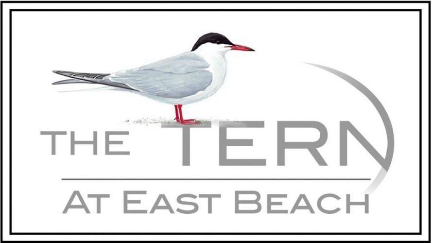 The Tern Logo